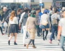 _shared_img_thumb_PAK95_shibuyaskoomori20141018113759_TP_V